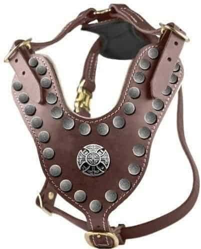 Solid-Brass-Hardware-Leather-Harness (1)