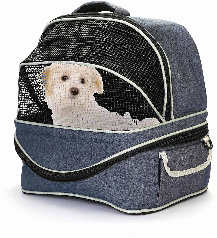Best Dog Carrier For Car Travel