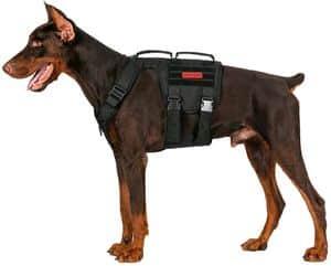 OneTigris Gladiator Tactical Dog Harness