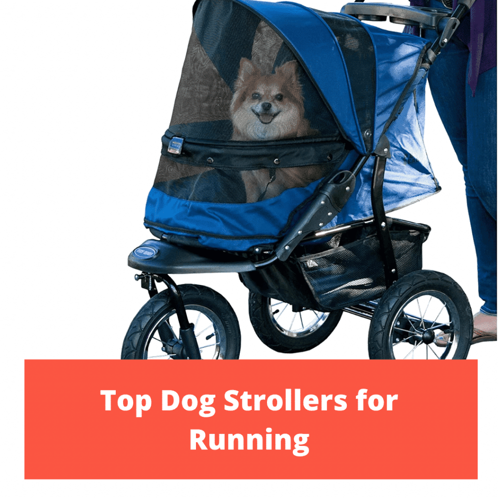 Top Dog Strollers for Running