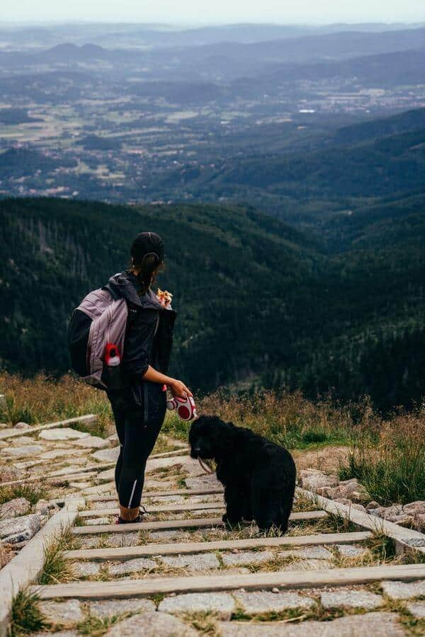 Woman Travelling With Dog