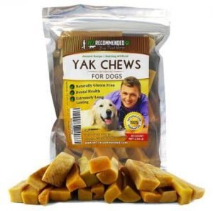 best canned dog food for small dogs